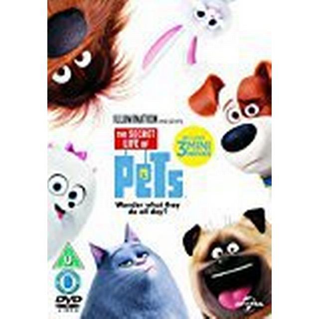 The Secret Life Of Pets (Blu-ray + DVD + Digital Download) [2015]